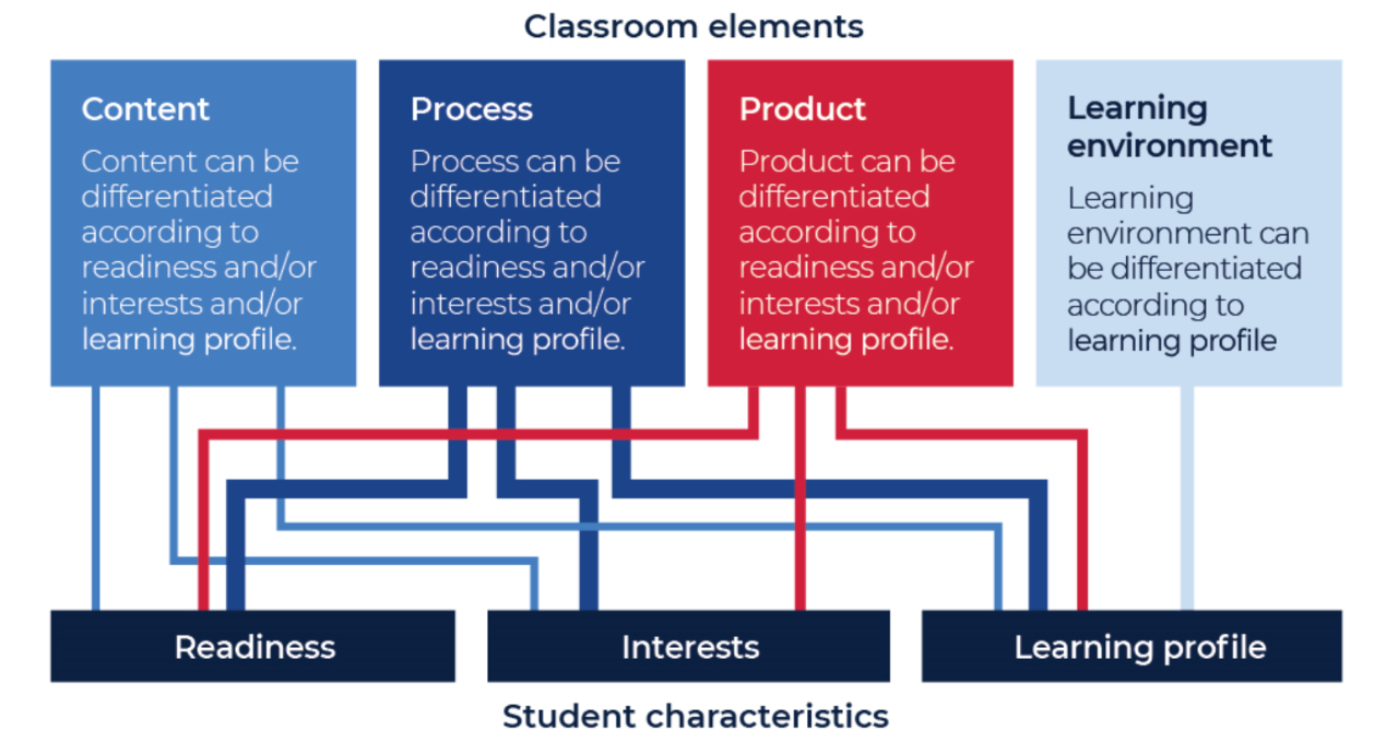 Detail of what to differentiate in the classroom