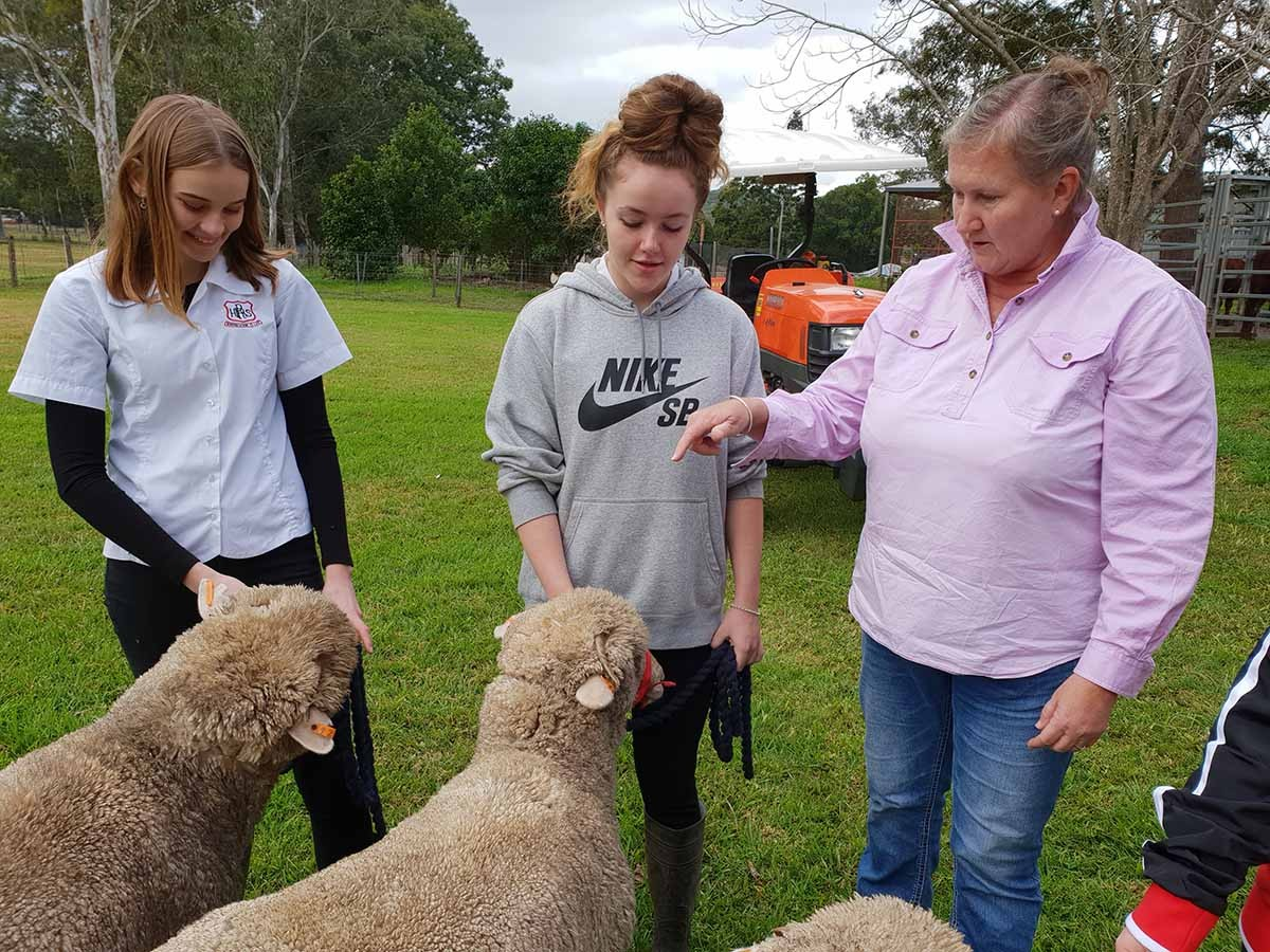 Sarah Ford with students and the new mob of sheep.