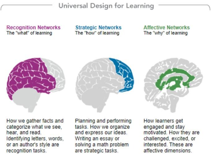 Screen shot: Universal Design for Learning, CAST