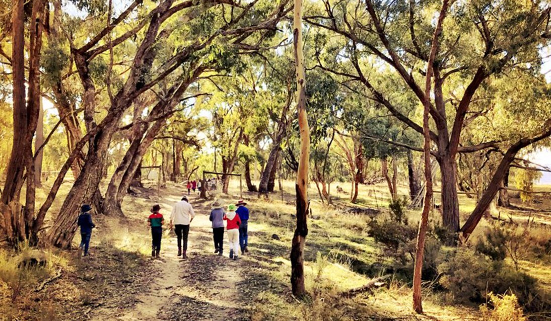 A group of students and teachers walk through bushland.